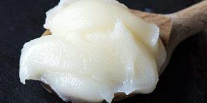 banha de galinha para regular o colesterol